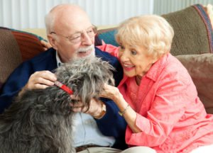 Senior-Couple-on-Couch-with-Dog