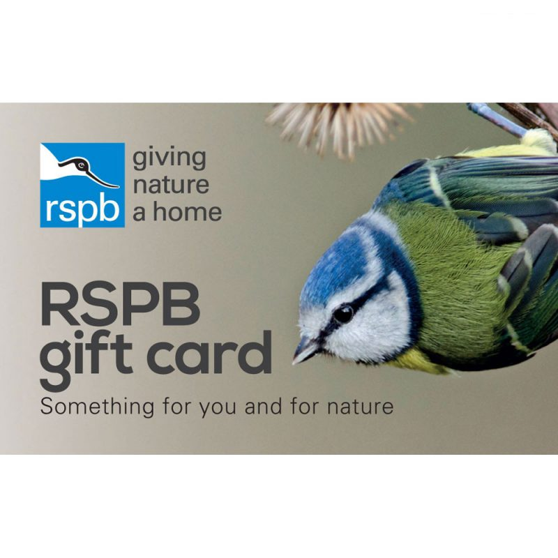 gift-card-blue-tit_1_1